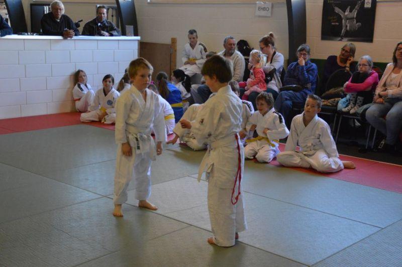 DSC0895-judo-aangepast-no-1