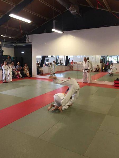 judo-2017--06-8-