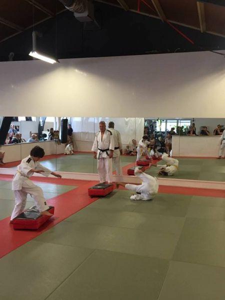 judo-2017--06-9-